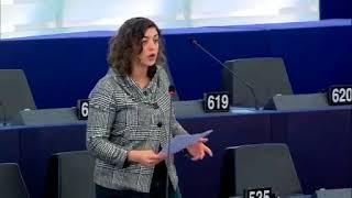 20180207 Estrasburgo - Reducción del espacio de la sociedad civil