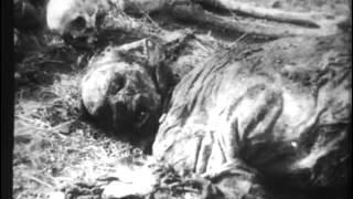 Великая Отечественная война-13-Освобождение Украины