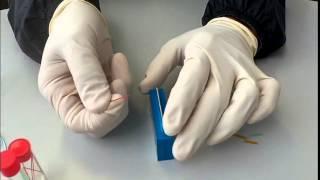 AMR マイクロチューブカッター HPLC Nano HPLC
