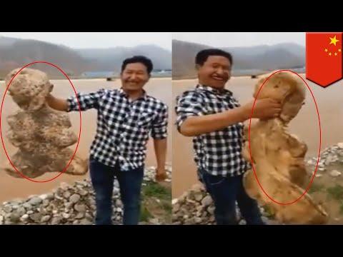 Aneh! Makhluk mutan manusia seperti makhluk laut ditemukan di Cina - TomoNews