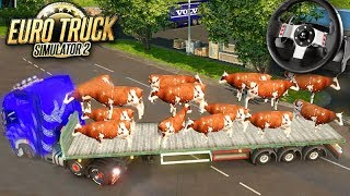 A CARGA de VACA VIVA!!! - Euro Truck Simulator 2