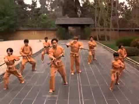 Película Beverly Hills Ninja descargar Mega v2