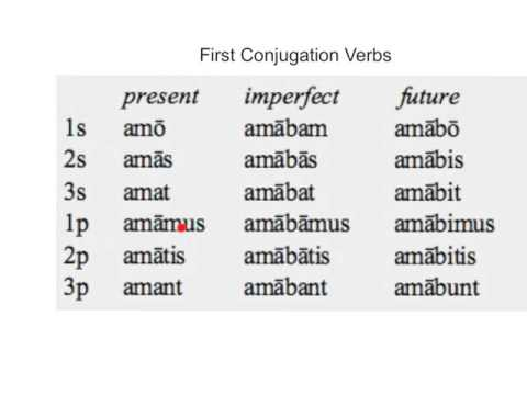 First Conjugation Verbs in Latin - YouTube