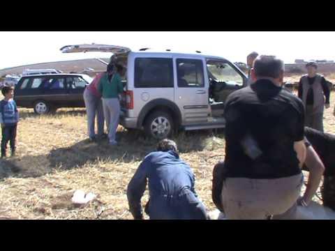 Kurban Kesimi 2013  KKB  44  Slaughter sheep women kill Çok kısa