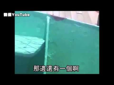 超血腥 海上射殺全都錄 疑海盜搶劫不成--蘋果日報 20140820