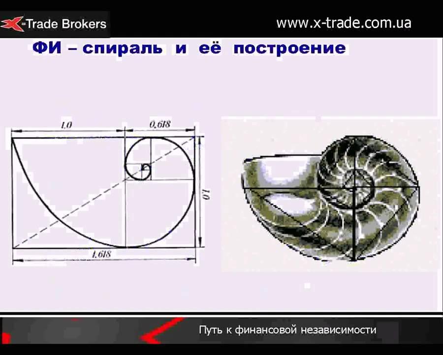 Основы волнового анализа  (волновая теория Эллиотта)