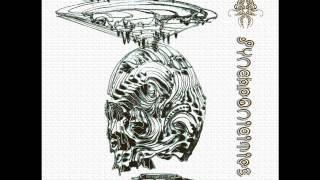 Cosmic Lizard  - Individuation