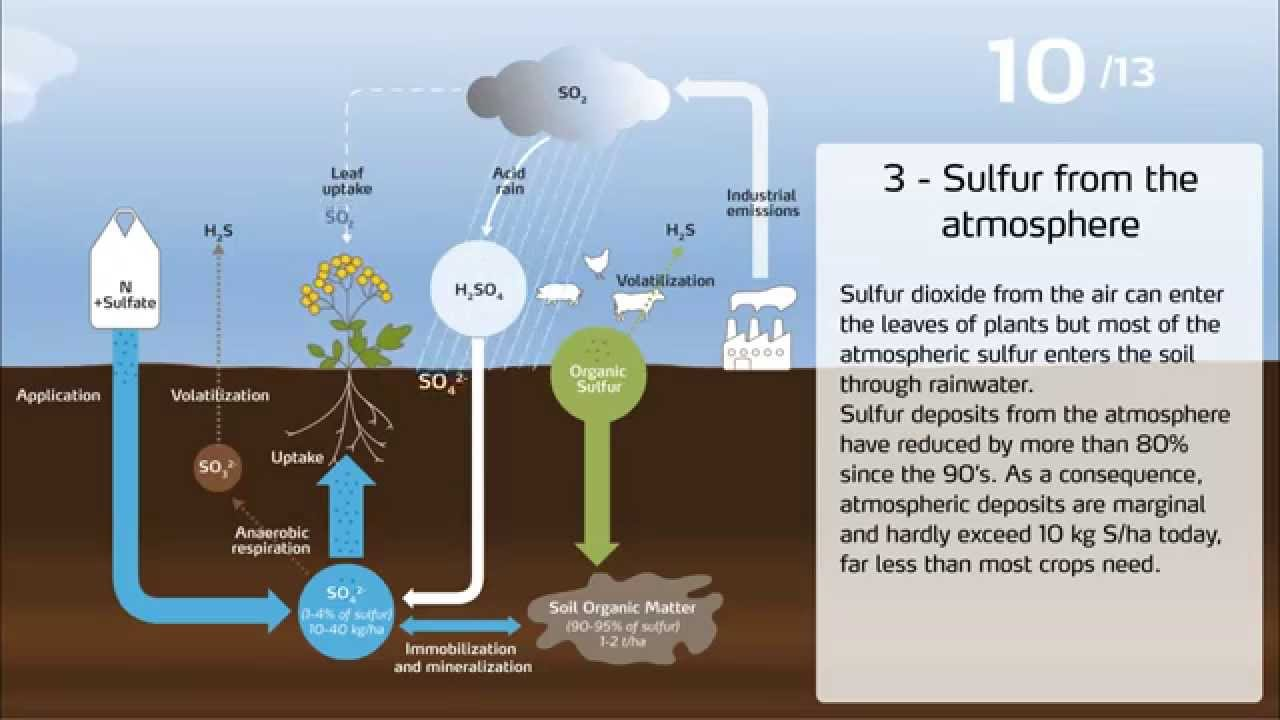 hight resolution of the sulfur cycle in agriculture
