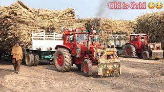 MTZ 50 | Belarus 510 & 520 Tractor Pulling Trailer | Punjab Tractors