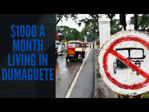 Philippines Updates! Walk & Talk on Dumaguete Blvd. August 28th, 2020 from YouTube · Duration:  10 minutes 27 seconds