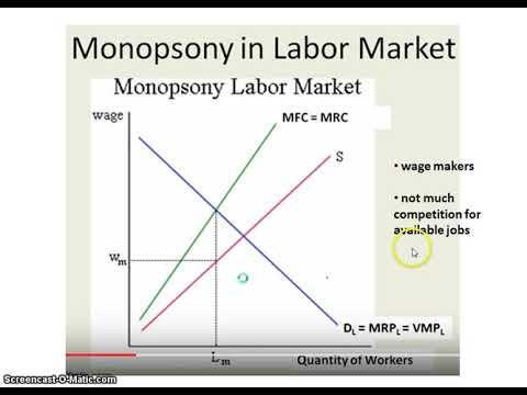 Monopsony Labor Market