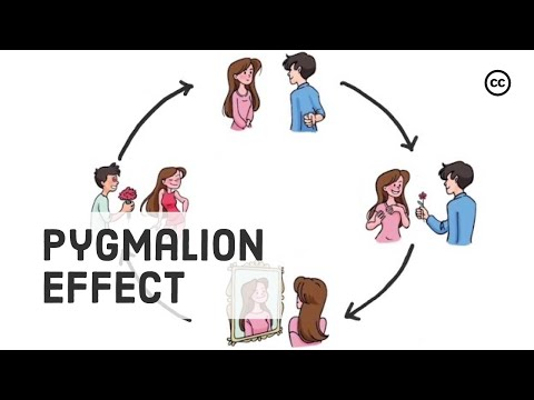 The Pygmalion Effect