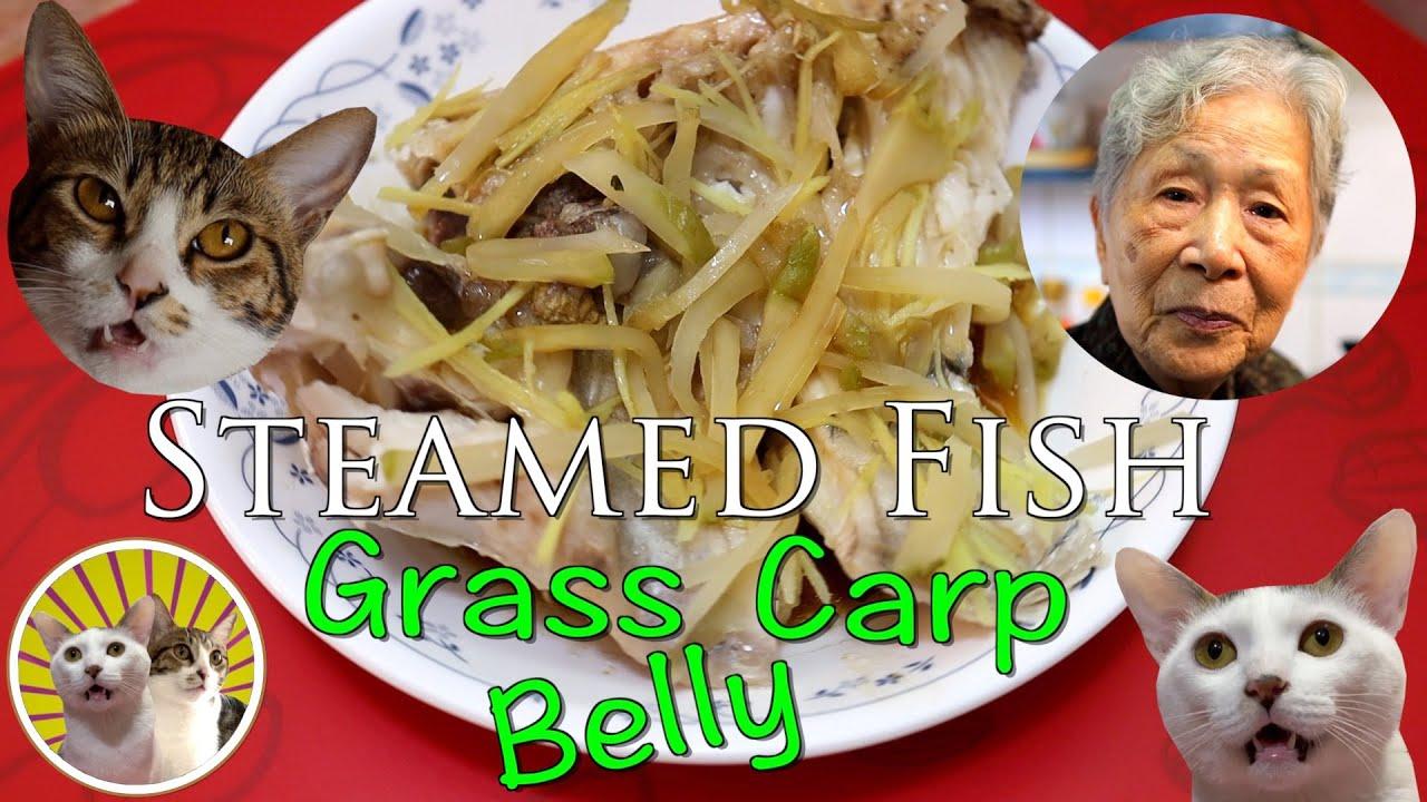 [Hong Kong Recipe] Steamed Grass Carp Belly   Oh!!!