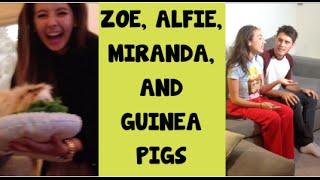 Zoe, Alfie, Miranda, and guinea pigs!