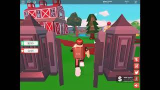 We bought a new glove and safe as a handbag ROBLOX