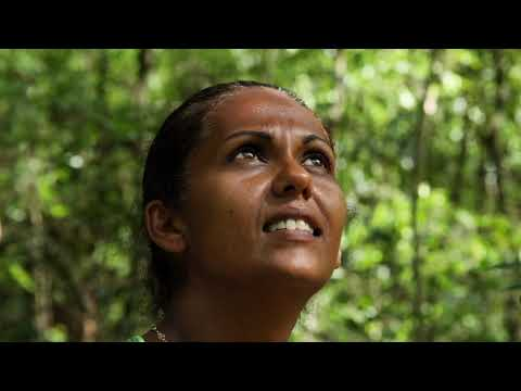 Madagascar : ITW Olivier Réserve de Berenty Fort Dauphin