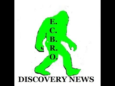 E.C.B.R.O. DISCOVERY NEWS BLOG CAST - bigfoot talk