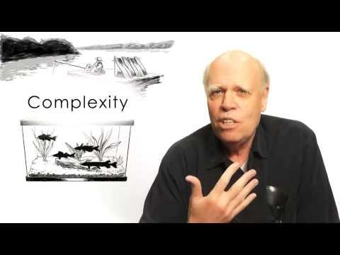 Jim Gee Principles on Gaming