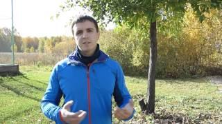 видео Как правильно бегать по утрам