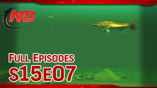 Drop Shot Walleyes! | Season 15 Episode 7