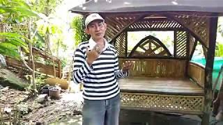 Salam Terakhir - Mansyur S - New Pallapa Lipsing by Dapur 69