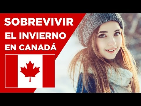 Paletas de Maple en Montreal vivir en Canada, Tire d'erable yotexplico de YouTube · Duración:  1 minutos 37 segundos