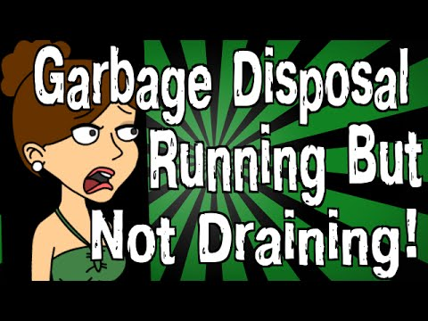 my-garbage-disposal-is-running-but-not-draining