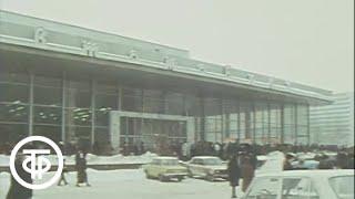 """Страсти вокруг """"Москвичей"""". Добрый вечер, Москва! Эфир 29.02.1988"""