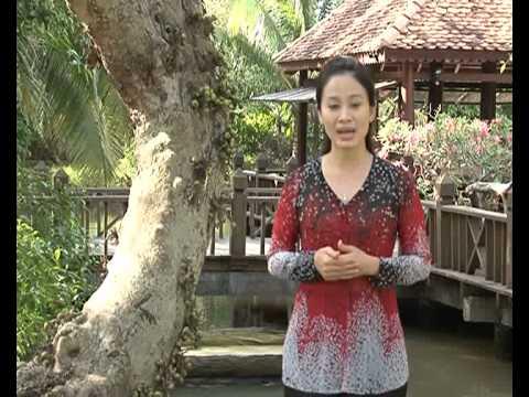 Mứt xoài - Đặc sản miền sông nước