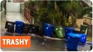 Family of Trash Cans Have Vacation Ruined