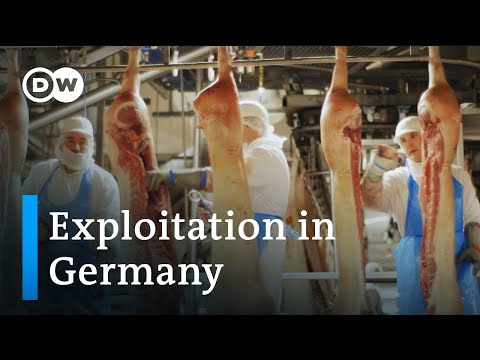 Tönnies and its contract workers | DW Documentary