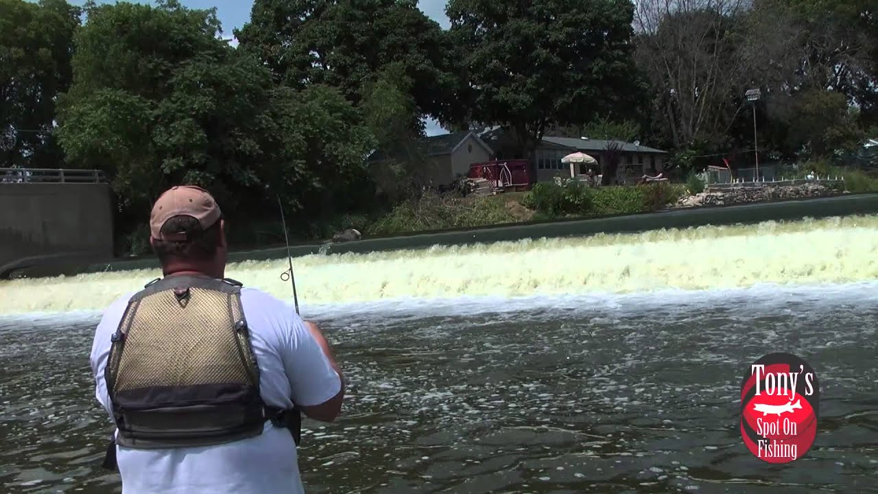 Smallmouth bass muskies and walleyes the fox river for Illinois river fishing report