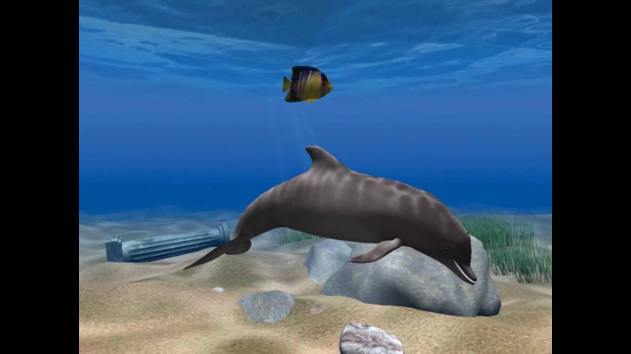 Дельфиненок mp3 скачать бесплатно