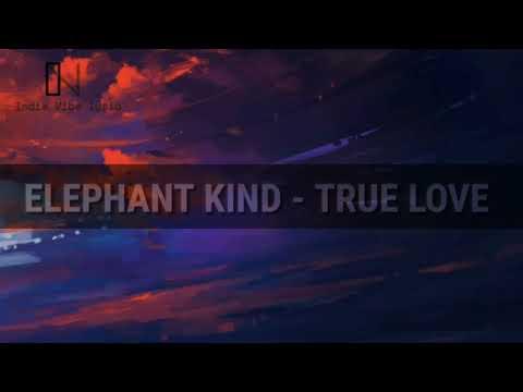 Elephant Kind - True Love (LYRIC)