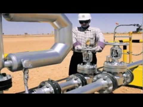 Turkey signs gas deal with Iraq