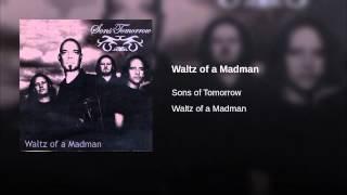 Waltz of a Madman