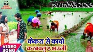 Kekara Se Kado Karwailu Ha Bhauji AMM MUSIC BHOJPURI Anisha music bhojpuri