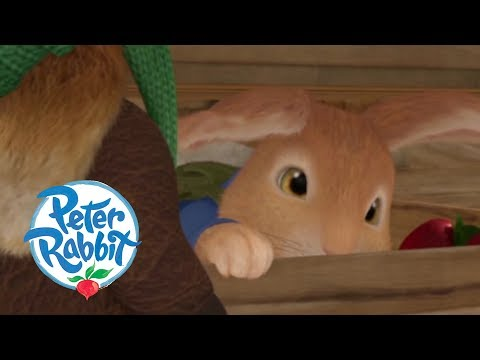 Peter Rabbit - Peter Is Caught in a Cage! | Cartoons for Kids