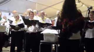 ESPINHO E MAR a Cantar Vareira
