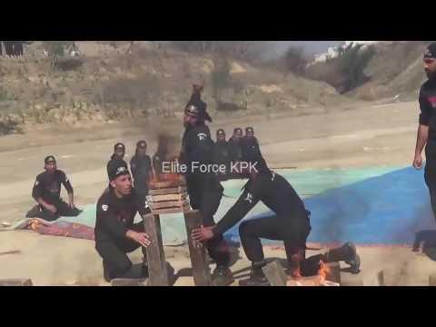 Elite Force (judo karate Training)BEC-13