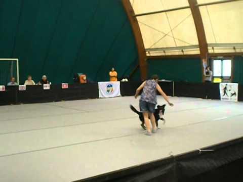 BEA E SILVIA -Never be alone- Internazionale Dog Dance