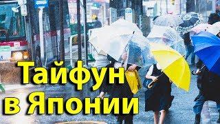 В ЯПОНИИ ТАЙФУН ИДЕТ НА ТОКИО. Как я на себе ощутил тайфуны в Японии