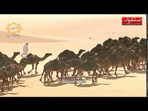 صحراء الربع الخالي ثاني أكبر صحراء في العالم