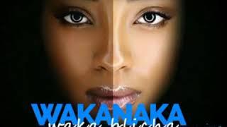 Wakanaka waka bleacher