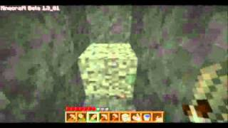 ZM 006: Minecraft - A Garden of My Own.