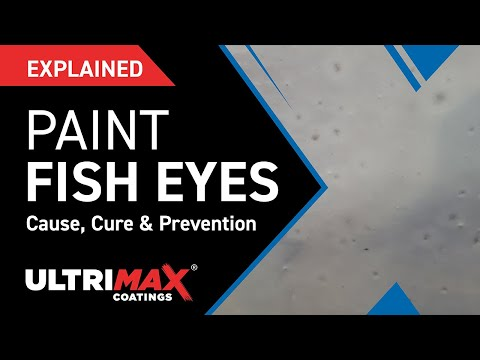 Explained: What Causes Fish Eyes In Paint Finish?