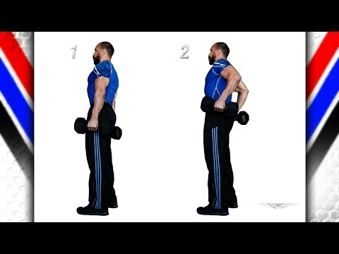 Traps Shrugs Elbow Flex 1 Dumbbell