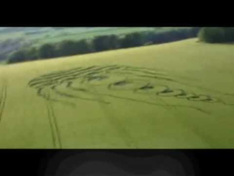 AMAZING NEW Jellyfish Crop Circle Video