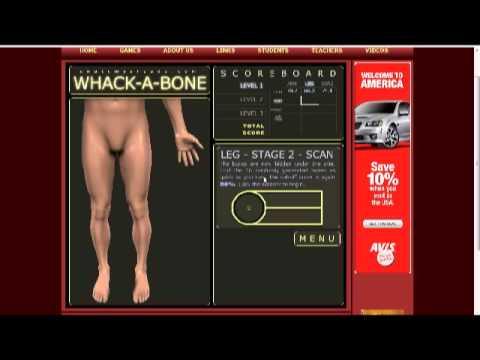 Whack A Bone Youtube