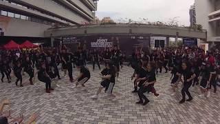 hku danso mass dance 2013 freshmen